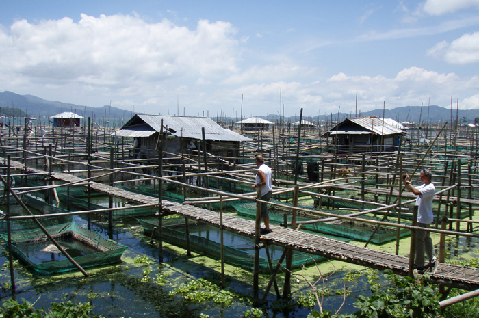 Fresh water fish farm by Tondano lake