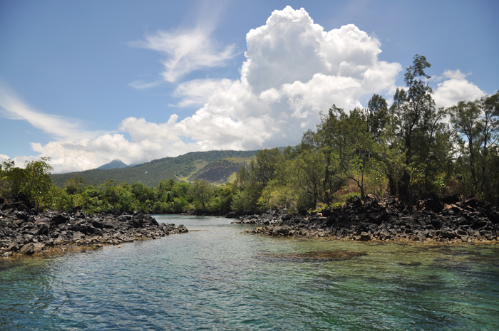 Quiet bay with mangroves at Batu Angus nature reserve
